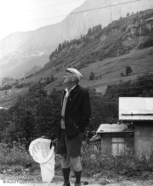 "VN in Loèche-les-Bains, Switzerland, 1965. ""I go up mountains in pursuit of butterflies, and find just before the timberline a region that corresponds to the Russia of my youth"" (Qtd. by Appel 209)."